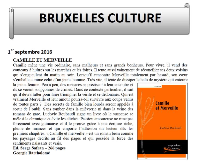 ArticleBruxellesCulture-Roubaudi